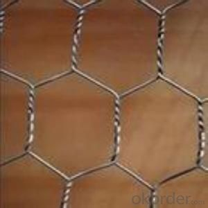Hexagonal Wire Mesh 0.4 mm Gauge 3/4'' Inch Aperture