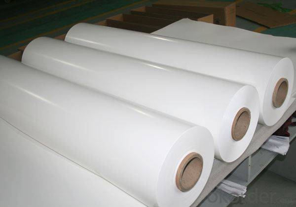 solar backsheet of PV modules PPE type