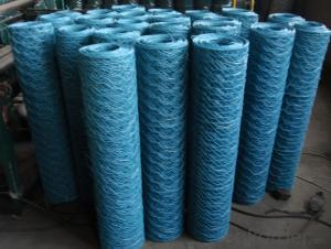Hot Dipped Galvanzied After Welded Wire Mesh PVC with Low Price