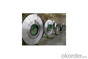 PROFESSIONAL FACTORY SALE spring steel strip