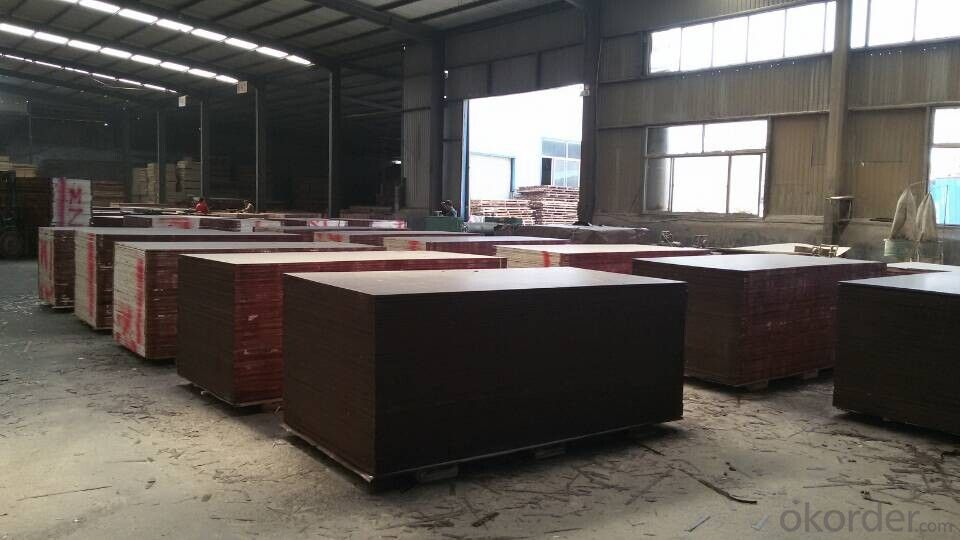 Brown Film Faced Plywood One times Hot Presses