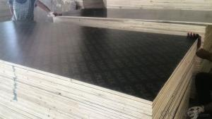 Black Film Faced Plywood  One Times Hot Presses