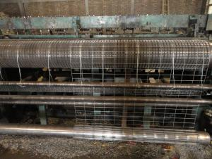 Steel Wire Welded Wire Mesh Electro Galvanzied Welded Wire Mesh