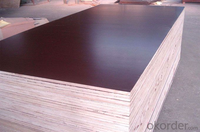 Brown Film Faced Plywood Three times Hot Presses