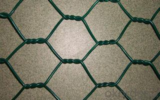 PVC PE Coated  Hex Wire Mesh All Kinds of Hard Ware Products