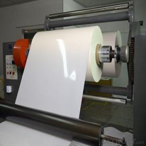 solar backsheet TPT