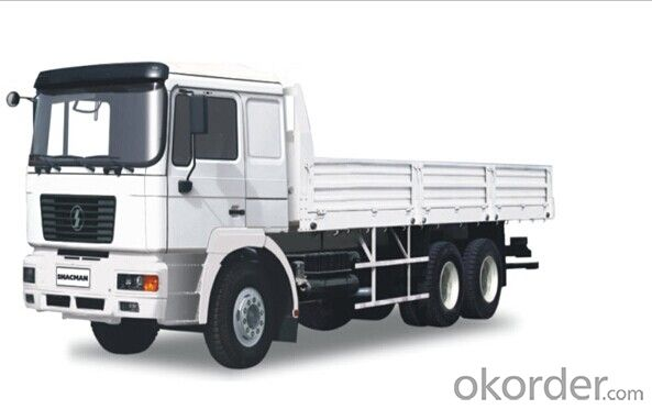 SHACMAN LORRY/SX1254JP434
