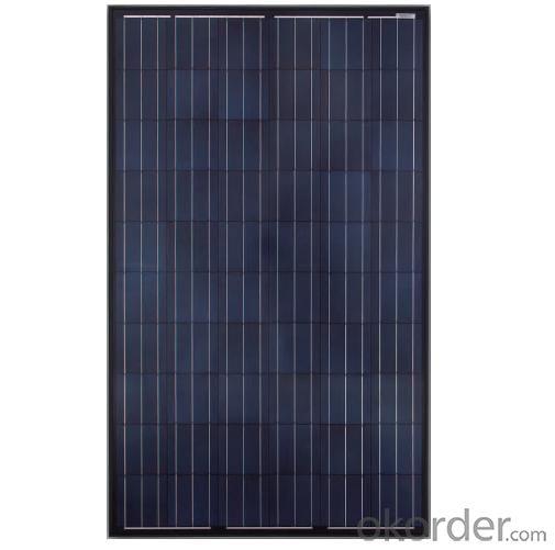 Poly panel JAP6(BK) 60 240-260W 3BB