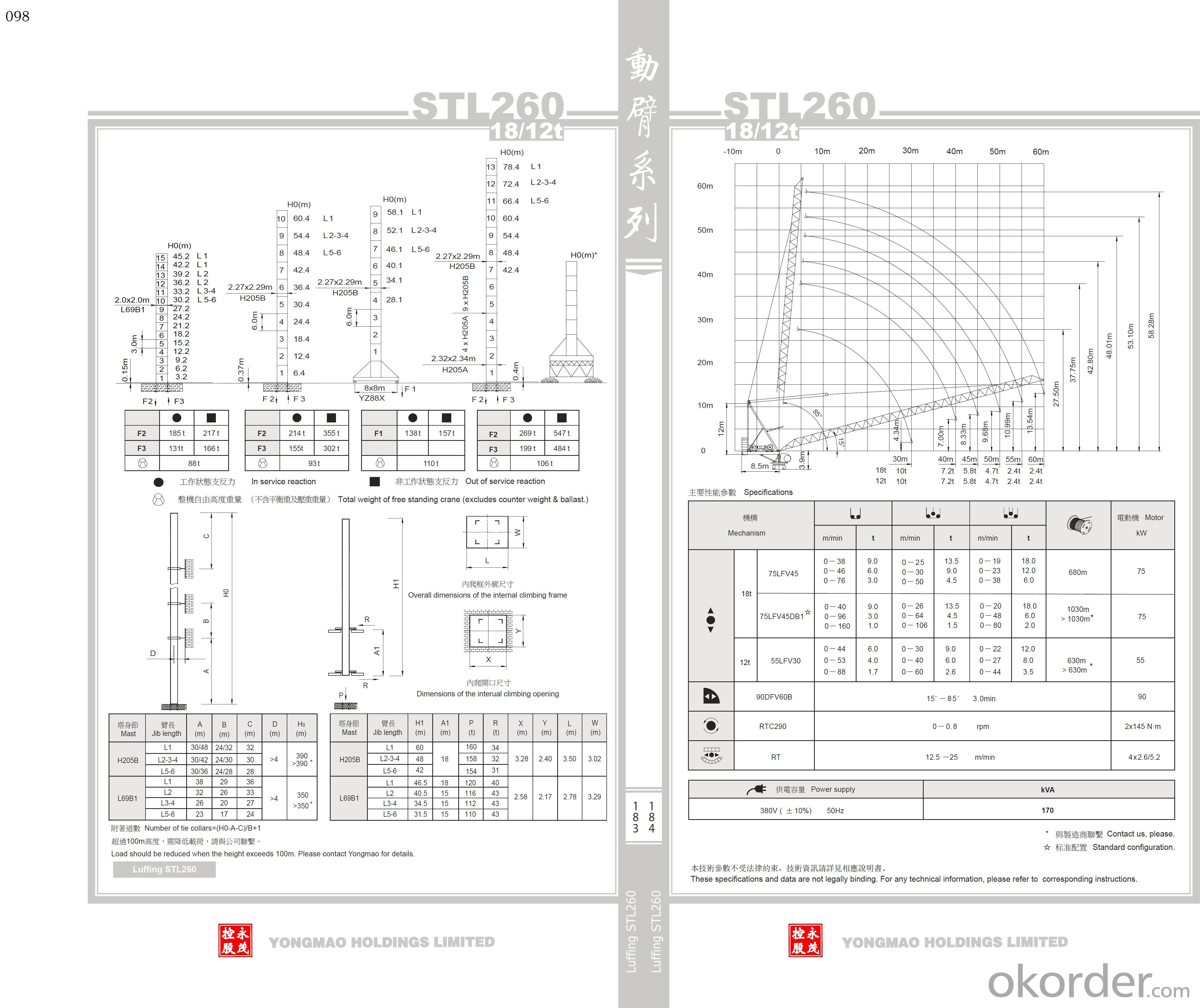 YONGMAO STL260 tower crane