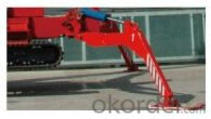 Self-propelled aerial working platform PST260