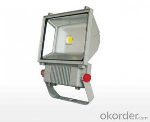 LED Floodlights EL-FL03