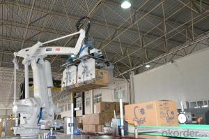 Automatic Robot Palletizer Machine