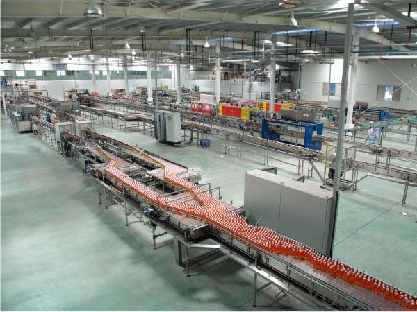 Conveying System For Bottle