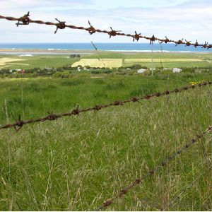 Barbed Wire Fence High Strength