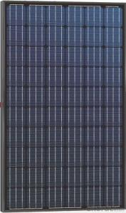 High Efficiency Monocrystalline PV Module Black Backboard 250W-260W