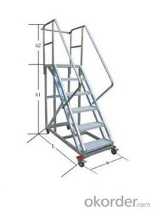 Movable ardal Step ladder DGT250-10