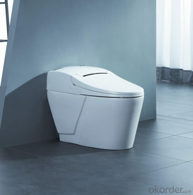 Digital Toilet