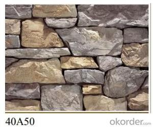 Culture stone BA 017