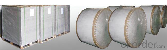 CHM Model High Speed Rotary Cutting Machine