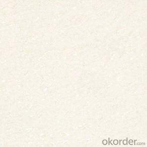 Polished Porcelain Tile Soluble Salt 500 Serie CMAX5026