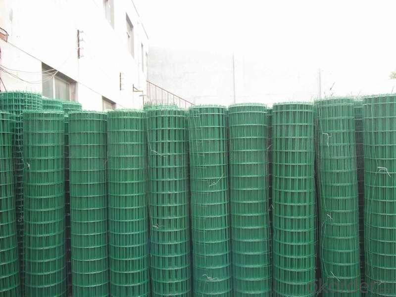 PVC Coated Crimping Wire Mesh PE Coated Low Price Wire Coated Mesh