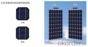 Double light solar panel