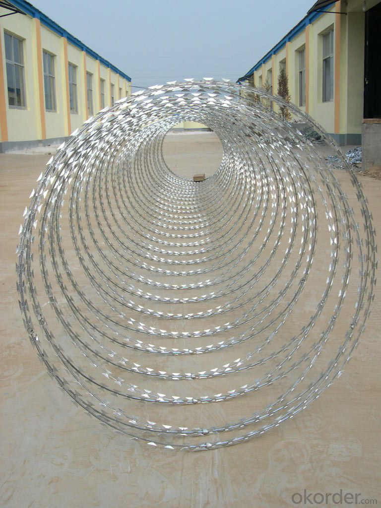 High Quality Galvanized Razor Barbed Wire With Hot Dipped Galvanized Wire