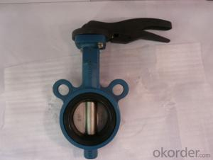 Ductile Iron Lug Type Butterfly Valve