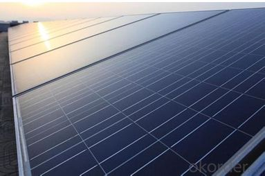 Polycrystalline Silicon Solar Modules 48 Cell 195W
