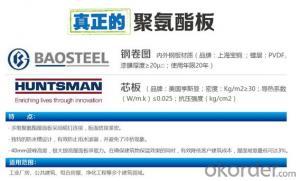 New type of polyurethane roof panel
