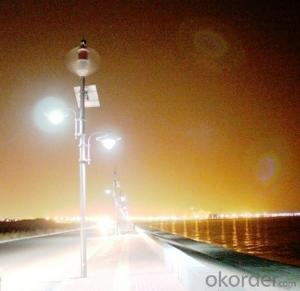 Wind Solar Hybrid Street Light System with Energy Saving LED Lamp