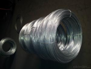 High Quality Electro Galvanized  Wire For Hexagonal Wire Mesh