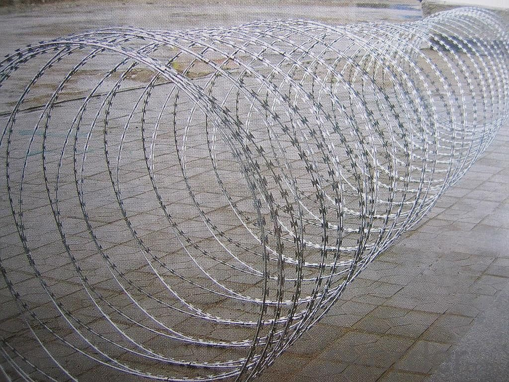 High Quality  Galvanized Razor  Wire With Electro Dipped Galvanized Wire