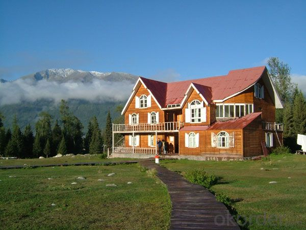 villa  wooden house