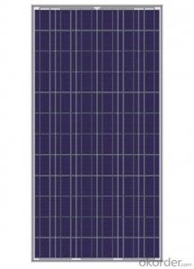 Polycrystalline Silicon Solar Panel Type CR290P-CR250P