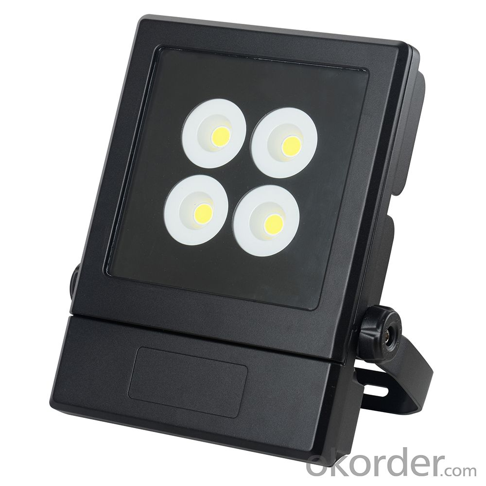 LED Flood Lighting 110W