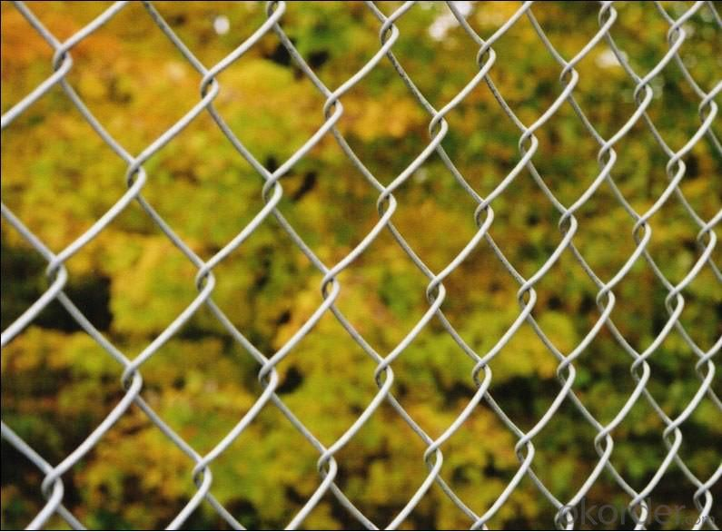 High Quality Glavanized Chain Link Fence
