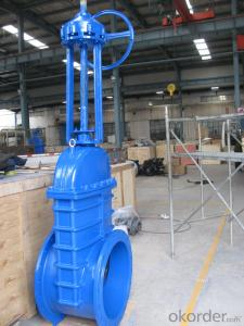 Rising Stem Solid Wedge Gate Valve F4