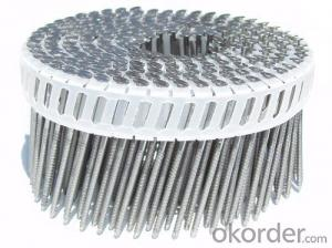 Electro Galvanized Coil Nails