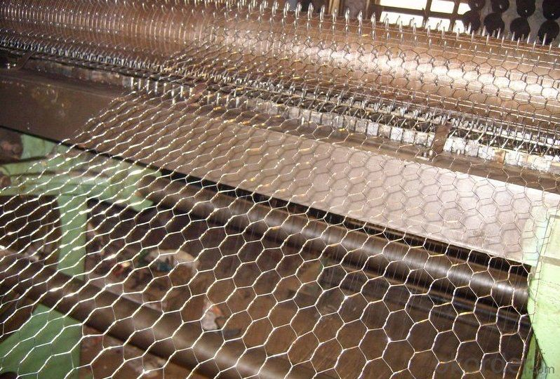 High Quality Electro Galvanized Hexagonal Wire Mesh