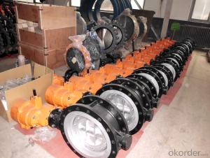 Concentric Butterfly Valve BS5155