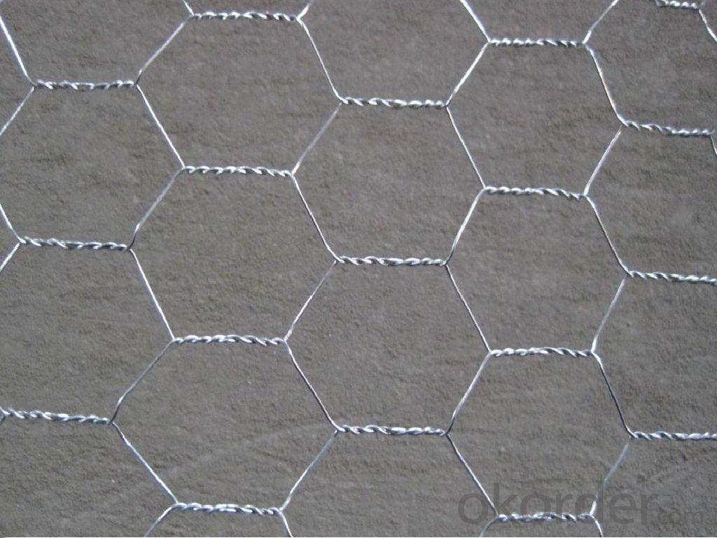 Galvanized Hexagonal Wire Mesh Panel