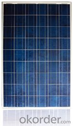 Solar Panel 240/245/259/255/260/265W