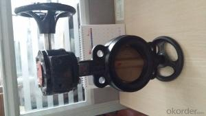 Concentric Butterfly Valve ISO5752