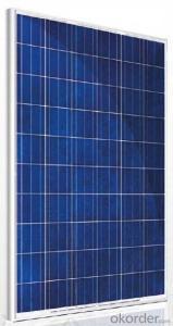 Polycrystalline Solar Module TSP-60 230-250W