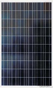 Polycrystalline Solar Module 255W