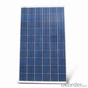 Polycrystalline Solar Modules 250w
