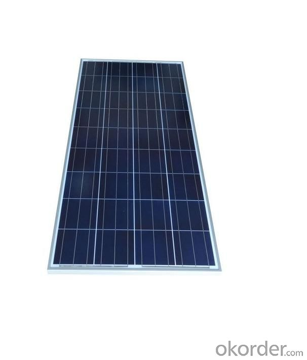 Polycrystal Solar Modules & Panels 150W