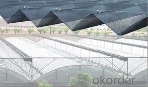 Sunshade net plain woven for plant