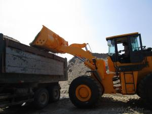 Wheel loader LTMA LT956